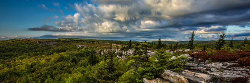 Dolly Sods Pano
