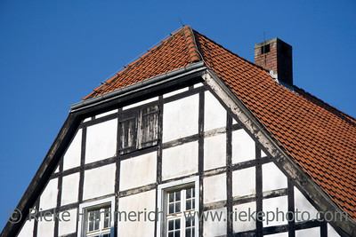 closeup of a half-timbered house in black and white with red tiles - in front of a forest in autum colors