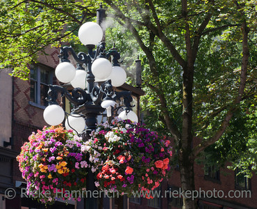 Ancient Street Lantern with Energy saving Lightbulb and Hanging Basket - Vancouver, British Columbia, Canada
