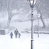 Walking home in the snow