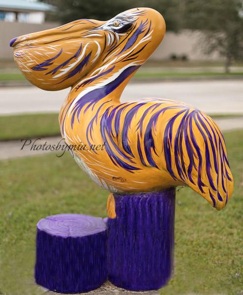 Tigers Fan_23