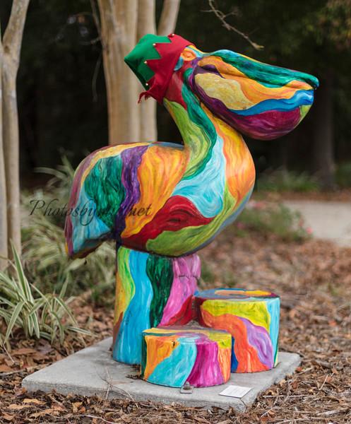 Rainbow Pelican_40