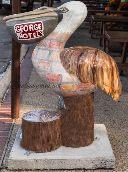 George St  Joe_15