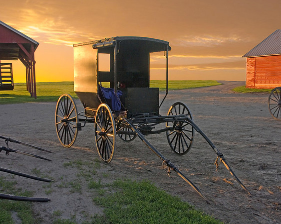Sunset Buggy  8 x 10