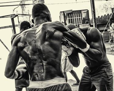 Boxers, Havana Cuba