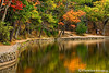 Autumn at Walden Pond