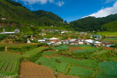 Mountain-Biking-Nuwara-Eliya-Sri-Lanka-2