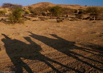 India-jaisalmer-thar-desert-1