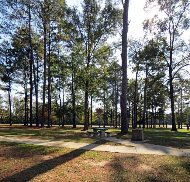 Two-picture panorama of the westbound rest area along I-20 near Eutaw, AL.