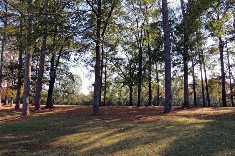 Westbound I-20 rest area near Eutaw, Alabama.