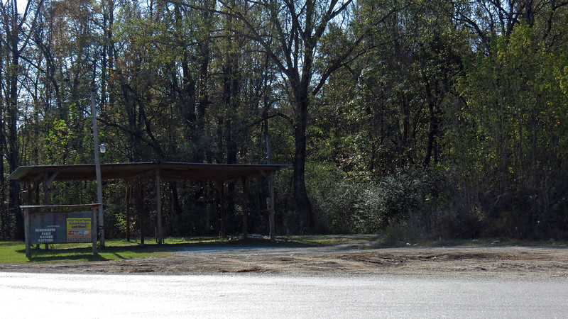 I spotted an old shed across from the Love's travel plaza near Toomsuba, MS during a fuel stop.