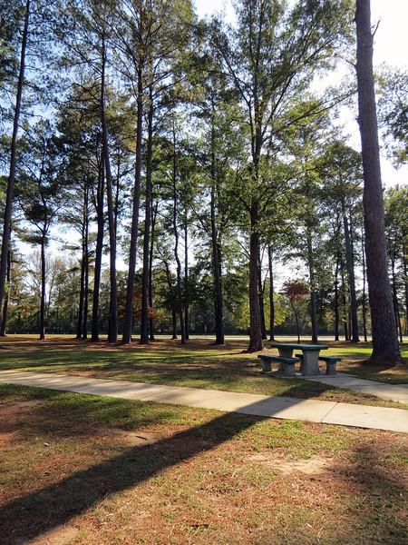 Large rest area along westbound I-20 near Eutaw, Alabama.