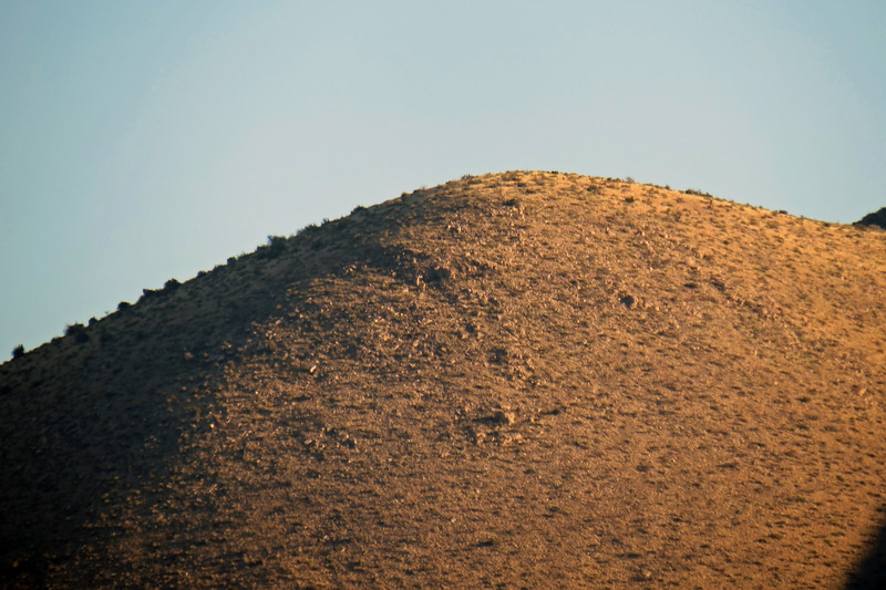 Zooming in on Lone Mountain (8,145 feet).