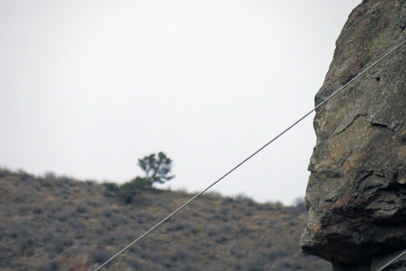 I tried to take a perspective shot of the tree off in the distance while having the cliff in front of us in the shot.  The camera focused on the wire on my first attempt.