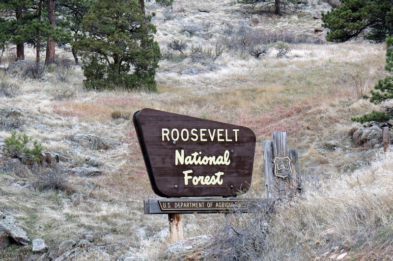 Entrance to the Roosevelt National Forest in South St. Vrain Canyon.