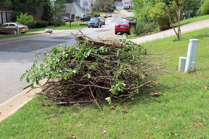 One of the services provided by Athens-Clarke County is a Leaf and Limb collection of branches and yard debris.  Collection rotates through the county's various neighborhoods so that residents see a collection once every six weeks.  With collection in Danita's neighborhood scheduled for the following week, I started the familiar pile of debris.
