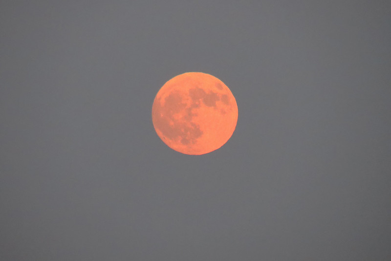 """The full moon for the month of August is called the """"Sturgeon Moon."""""""