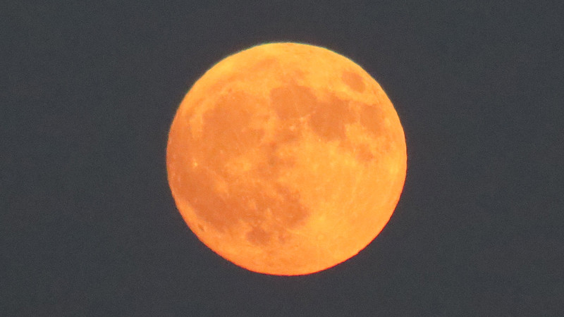 I also liked the color of tonight's moon.
