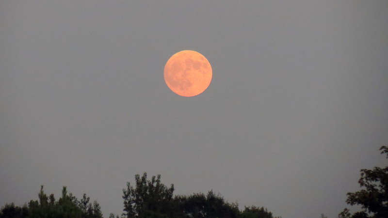 I did some research and discovered that the full moon was scheduled for around 8 AM on August 26, or tomorrow morning.