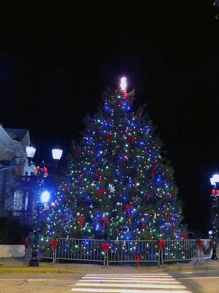 Christmas tree at Athens City Hall, East Washington Street and College Avenue.
