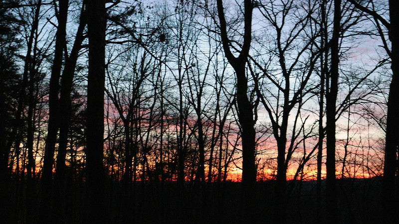 Looking through the woods to the west at the wonderful colors.