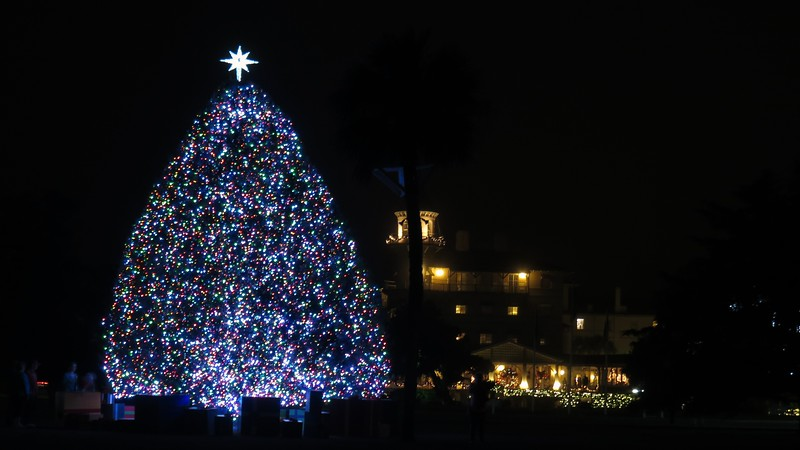 The Christmas tree with the Jekyll Island Club Hotel in the background.