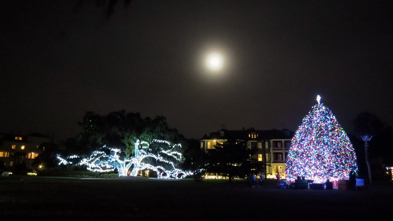 I stopped once I reached Riverview Drive in front of Indian Mound Cottage and got a decent picture of the Christmas Tree, the decorated Live Oak tree, and the full moon overhead.  The Club hotel (L) and Sans Souci (R) can be seen in the background of the photo above.
