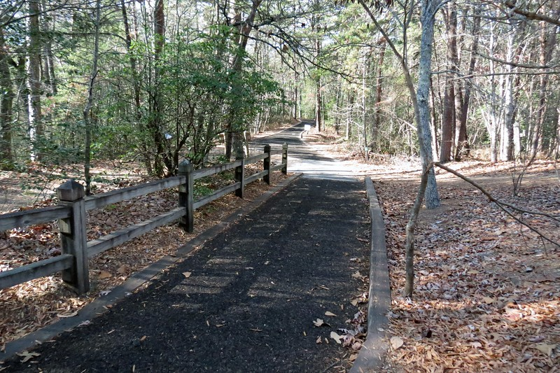 The dirt trail eventually turned into a path made of recycled rubber tires which was a lot easier on your feet.