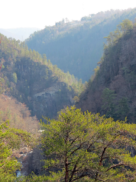 I pointed the camera downstream (to my left), and zoomed in on the gorge walls and the Tallulah River below.