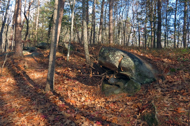 This is nice and relatively short walk through the woods on a well-kept trail.
