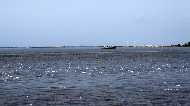 The bridge seen in the photo above is part of the Torras Causeway to neighboring St. Simons Island.