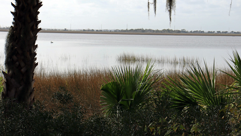 Benches have been placed at various intervals along Riverview Drive that offer wonderful views of the marsh.