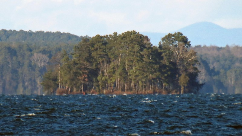 One of several small islands within Lake Hartwell.