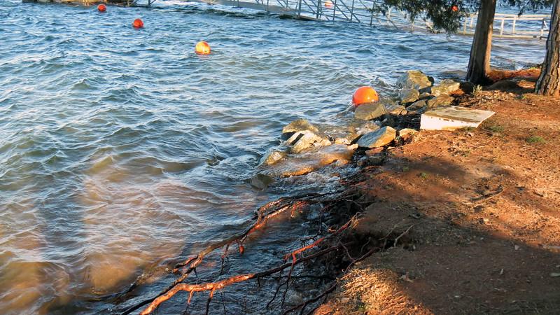 Shoreline at the Big Oaks Recreation Area, Lake Hartwell.