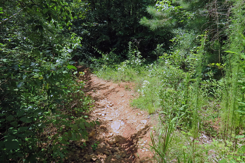 """This particular access trail is one of these """"well known hidden"""" river access points located in the Snapfinger neighborhood of the city."""