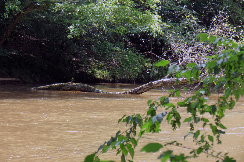The North Oconee flows south to the east side of Athens past this location.