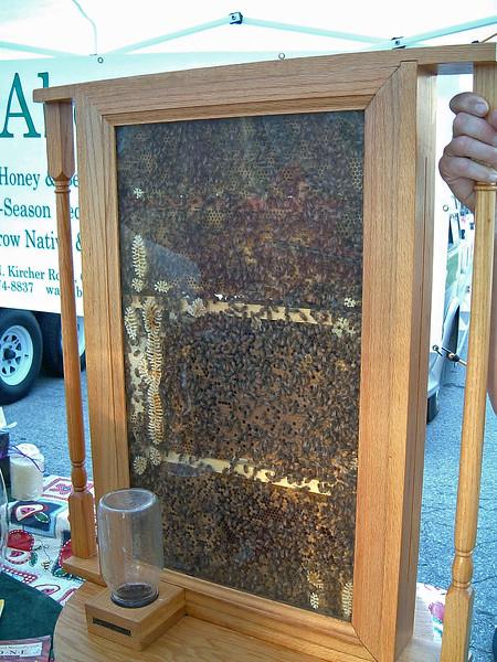 A beekeeping display.