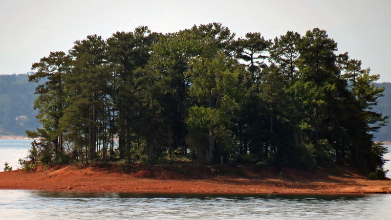 Zooming in on one of the many small islands on Lake Hartwell.