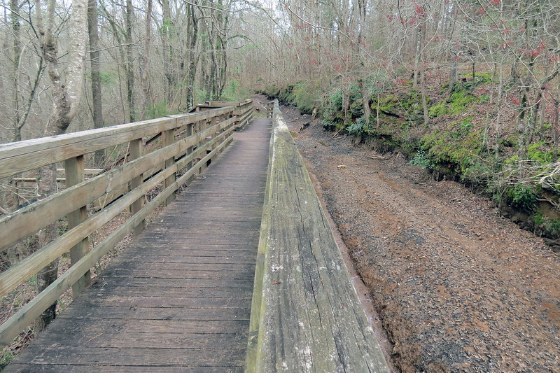 The foot bridge leads to two of the many trails the park has to offer.