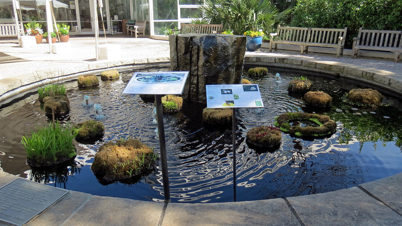 The photo above is of another fountain at the entrance to the Visitor Center.  This fountain is called the Water Garden and features native freshwater plants.