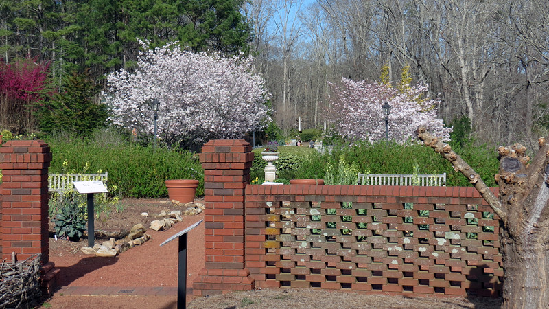 I love the flowering trees in the background !