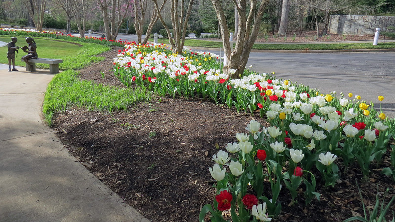 A walk past a beautiful line of tulips concluded our visit.