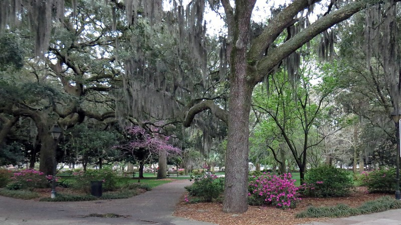 The northwestern corner of Forsyth Park as seen from the intersection of Gaston & Whitaker.
