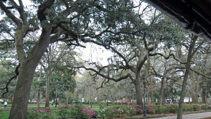 Forsyth Park.  The building on the right of the photo above is the Garden of Fragrance, an area filled with fragrant plants designed to contain the various scents.