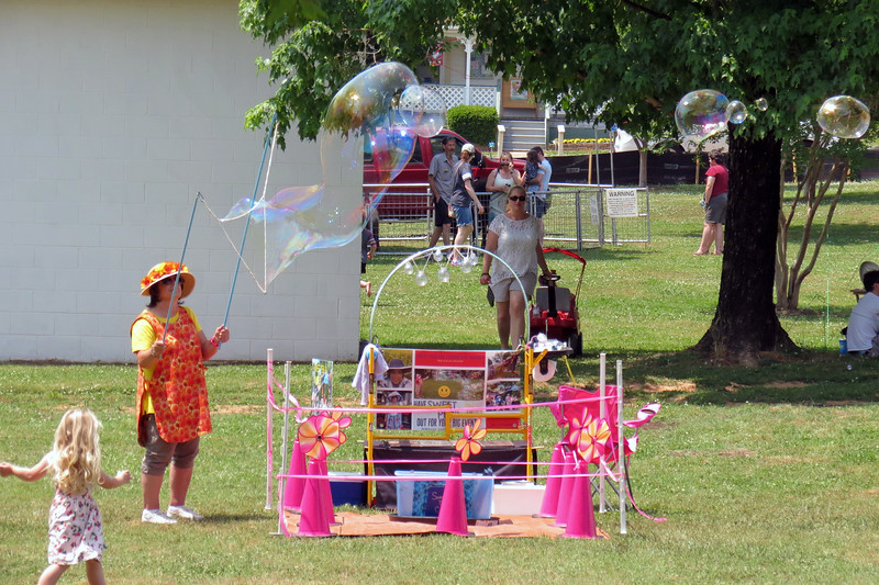 Several activities for kids were set up in the lawn area.