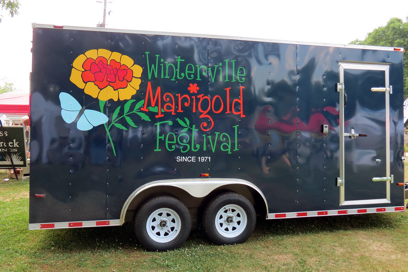 "The name ""Marigold Festival"" stems from the fact that the marigold was chosen as the city's official flower in the early 1970s."