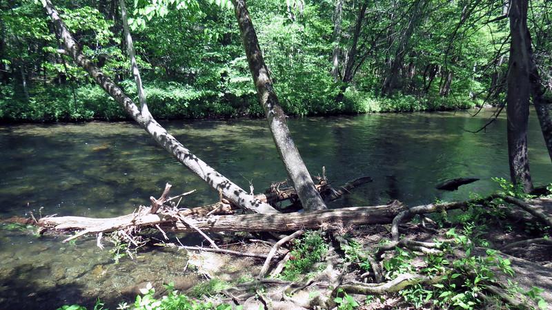 The Oconaluftee River.