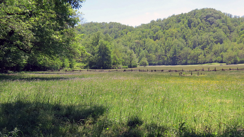 The field shown above is behind the Enloe Barn.