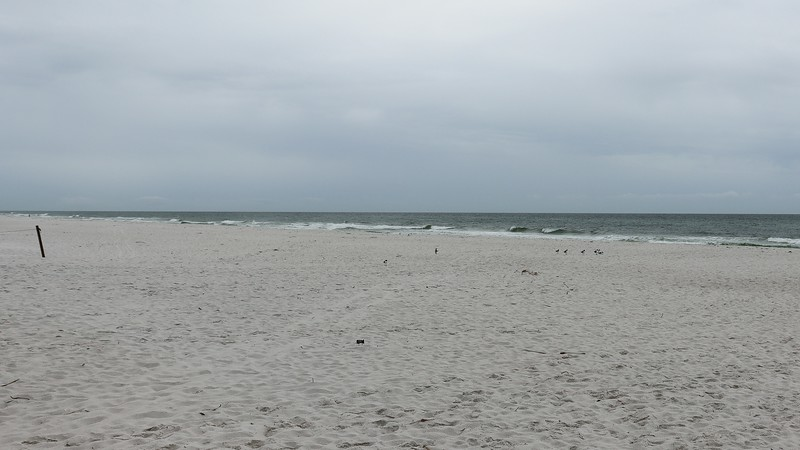 I saw a few beachgoers here and there.