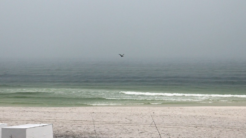 He started out flying steadily along the shoreline.